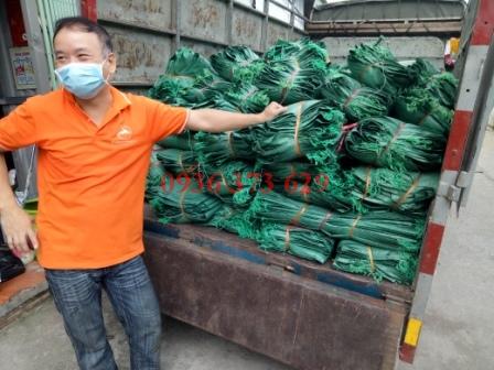 Bán bao tải dứa tại Hà Nội | Nhà sản xuất và cung cấp Minh Sơn MSC